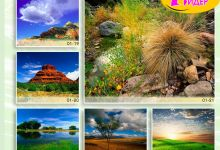c_220_150_16777215_00_images_Bigprint_04.jpg