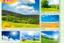c_220_150_16777215_00_images_Bigprint_05(1).jpg