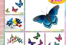 c_220_150_16777215_00_images_Bigprint_38.jpg