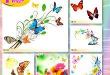 c_220_150_16777215_00_images_Bigprint_39.jpg