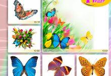 c_220_150_16777215_00_images_Bigprint_40.jpg