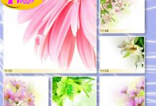c_220_150_16777215_00_images_Bigprint_43.jpg