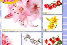 c_220_150_16777215_00_images_Bigprint_45.jpg