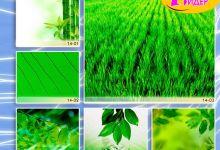 c_220_150_16777215_00_images_Bigprint_62.jpg