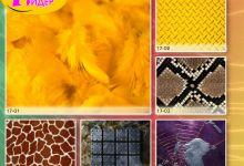 c_220_150_16777215_00_images_Bigprint_73.jpg