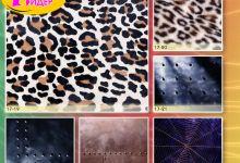 c_220_150_16777215_00_images_Bigprint_75.jpg
